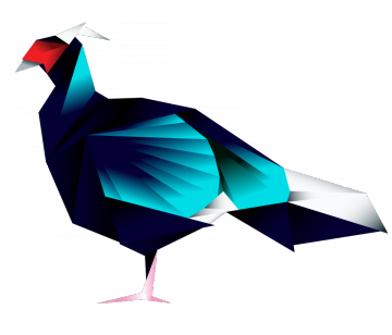 Germain's Peacock Pheasant